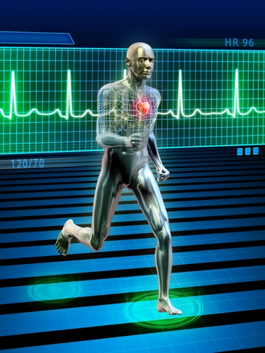 How Does Exercise Lower Blood Pressure?