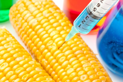 7 Foods Most Likely to Be Genetically Modified
