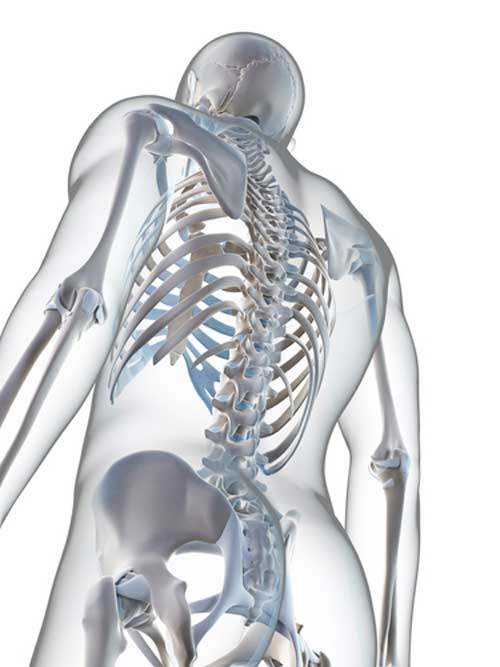 5 Nutrients Other Than Calcium You Need for Healthy Bones