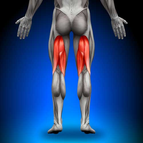 Strengthen Your Hamstrings to Prevent Injuries: Here Are the Best Ways