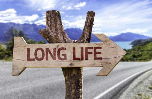 Longevity and Markers for Aging: is How Long You Live All in Your Genes?