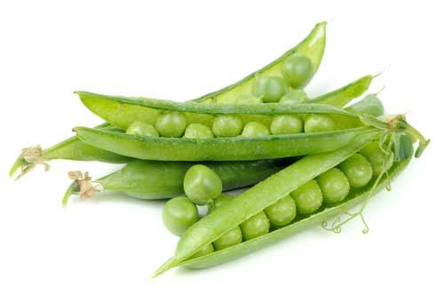 Plant-Based Protein: What's the Scoop with Pea Protein?