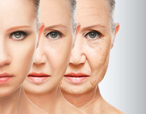 Why Your Chronological Age Isn't as Important as Your Biological One