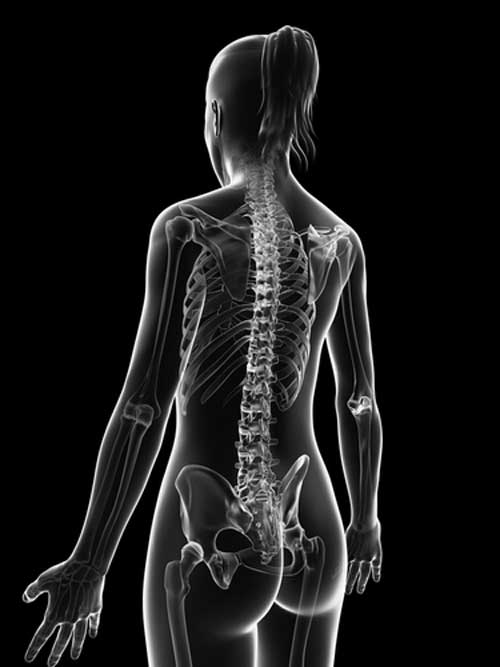 How the Female Spine Changes with Age and Why It Matters