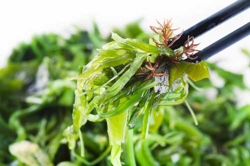 2016 Food and Nutrition Trends