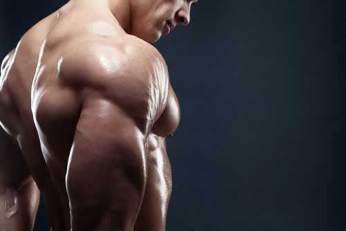 Can Having More Muscle Help You Live Longer?