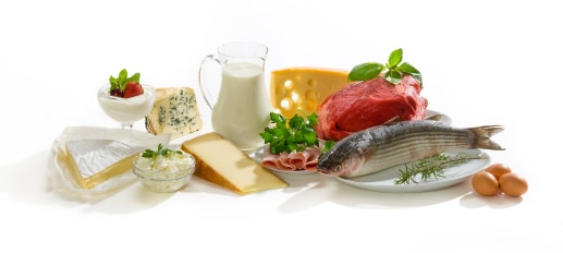 dietary protein for athletes