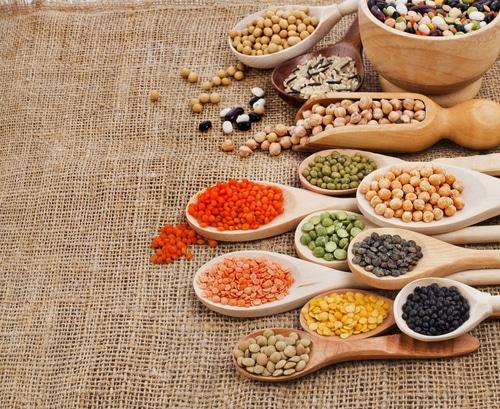 Prebiotics: Keeping Your Intestinal Flora Healthy