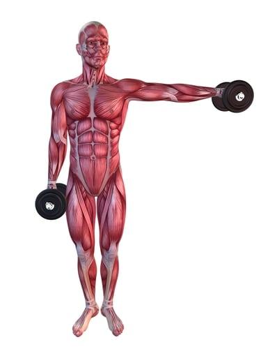 Correcting Shoulder Muscle Imbalances