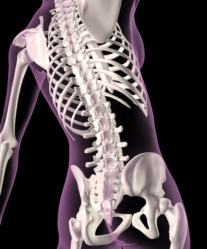 Why High Sodium Diets Are Bad for Your Bones