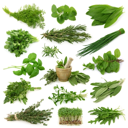 More Antioxidants Than Vegetables? Here's Why You Need to Add More Herbs to Your Food