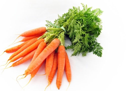 Ten Important Reasons Why You Need More Vitamin A in Your Diet