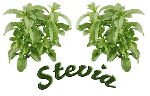 Choosing a Stevia Sweetener
