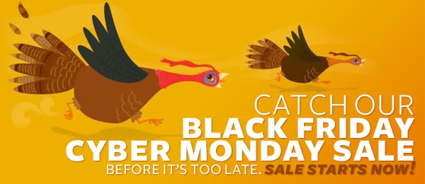 Black Friday Starts Early!  - 4 Days of Incredible Savings