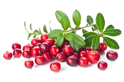 Nine Amazing Health Benefits of Cranberries