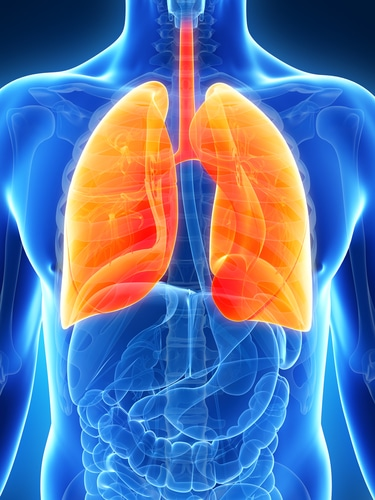 how to make your lungs stronger