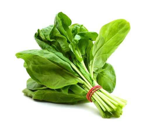 Health and Nutritional Benefits of Spinach