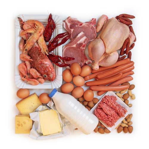 4 Reasons You May Need More Protein in Your Diet