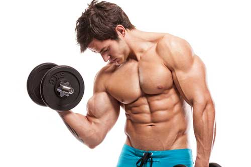 Beyond Protein: the Anabolic Effects of Carbohydrates