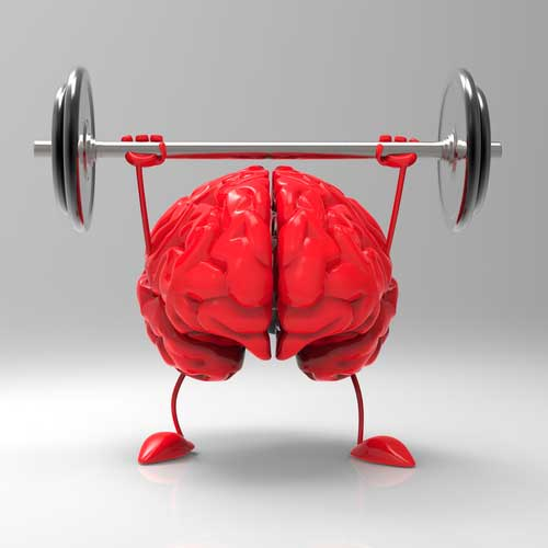 The Role Your Brain Plays in Strength Development