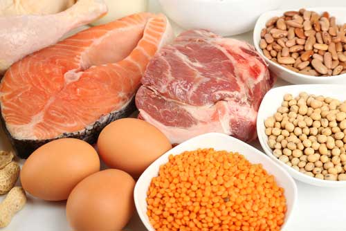 Do You Need to Eat Protein at Every Meal?