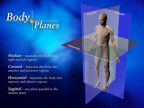 Graphic showing all three planes of motion for exercise