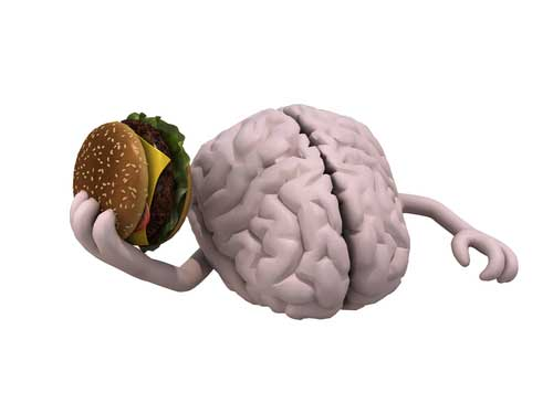 New Insights into How Your Brain Tells You to Stop Eating