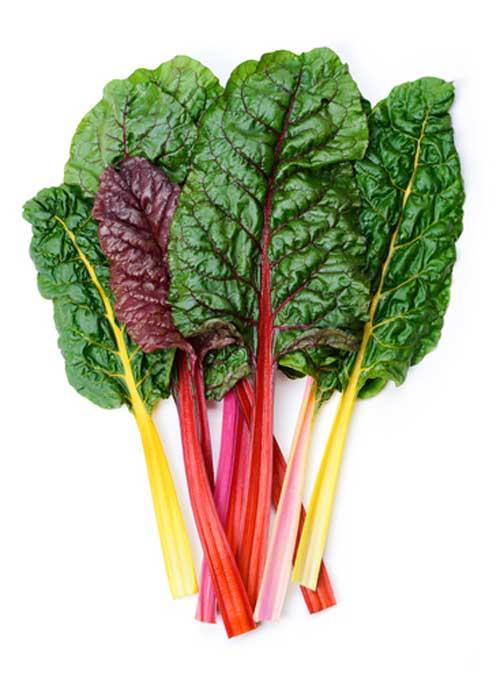 Top 5 Vegetables Based on Nutrient Density