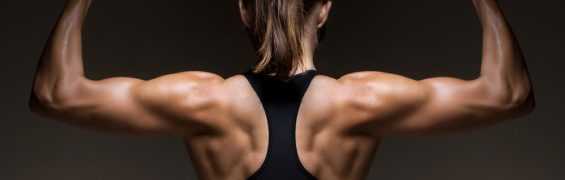 Strength Training: Why You Need to Focus More on Your Posterior Chain