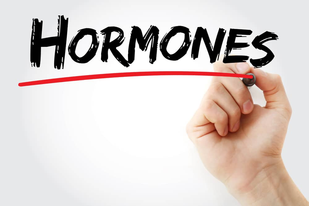 Hand writing Hormones with marker to emphasize how hormones affect your body composition