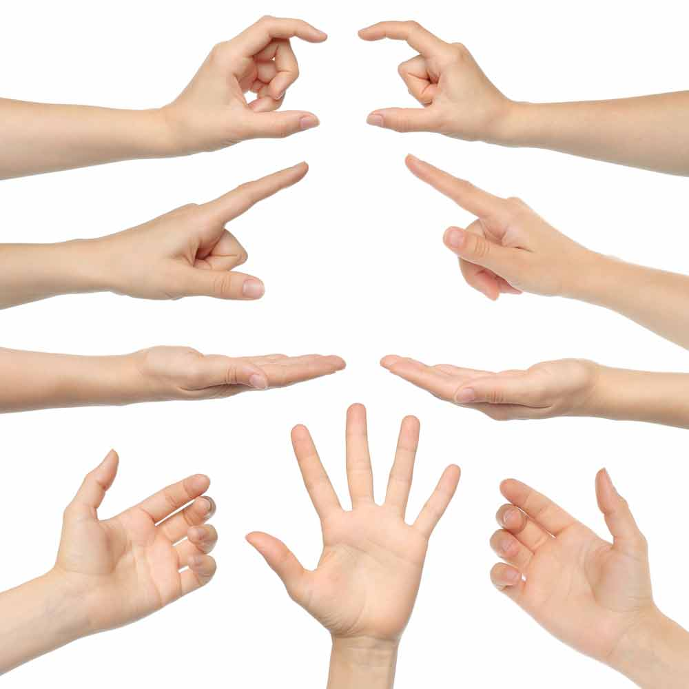 image of several hands