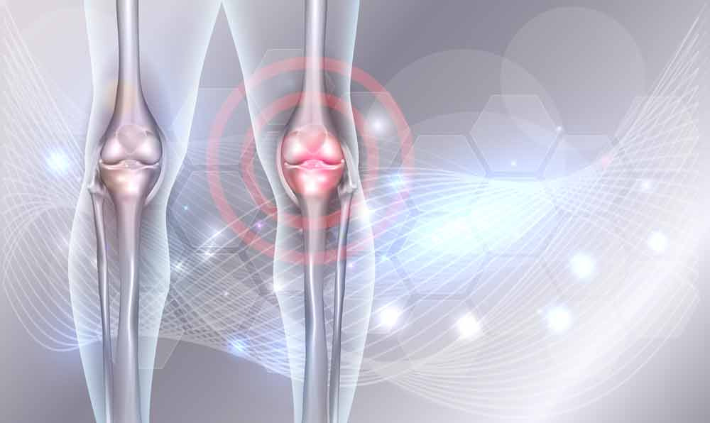 image showing knee joints