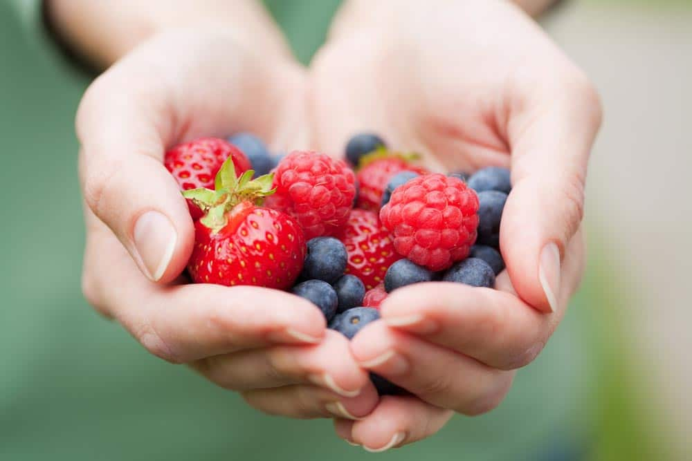 image of hands holding fresh berries that are commonly used in a Nordic diet