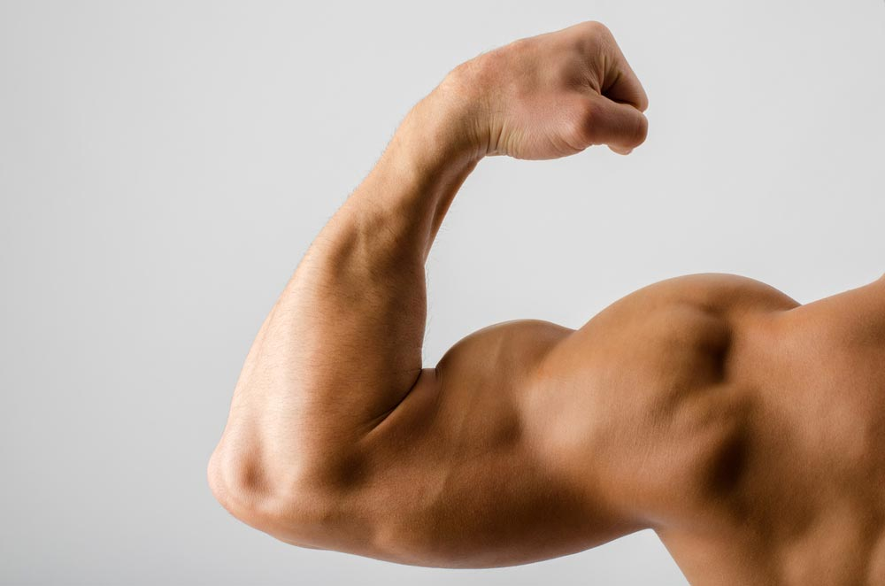 Can you really change the shape of your muscles?