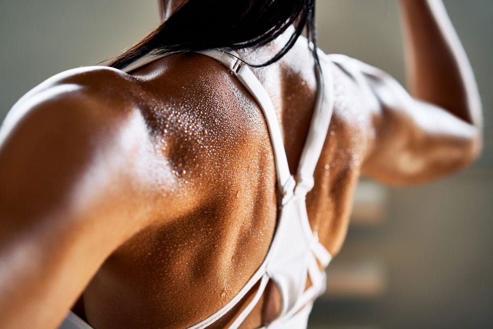 Muscle Aging