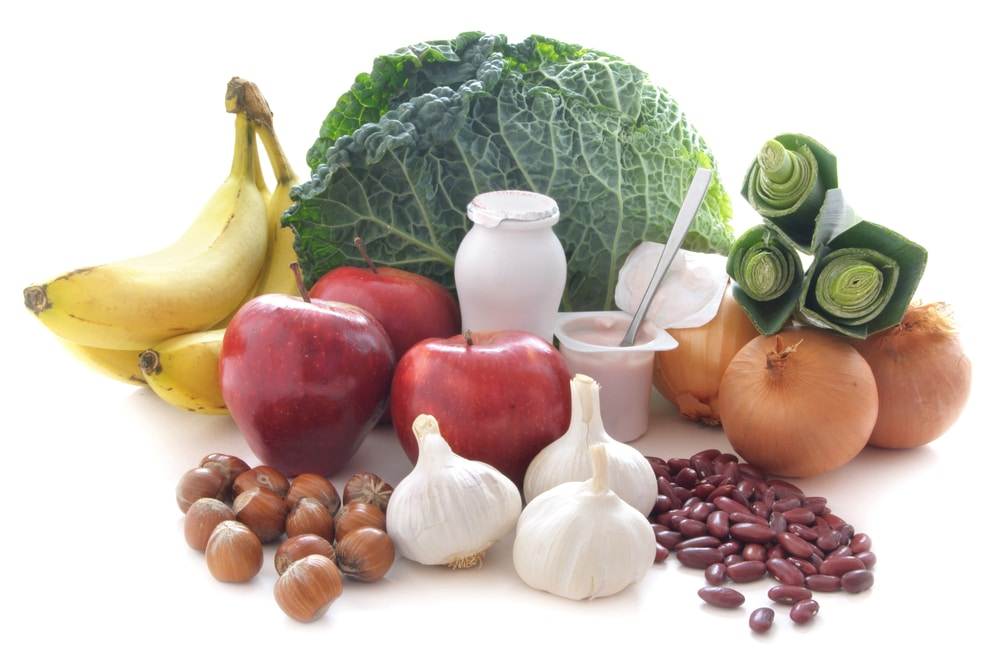 Gut Health and Osteoporosis
